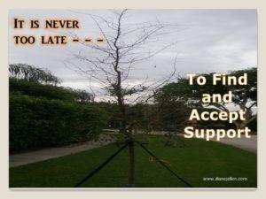 tree-support-brace