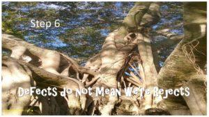 step-6-trees