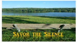 savor silence bench