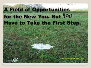 field opportunities